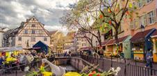 Guided tour: Colmar celebrates spring