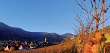 Alsace randonnée pédestre 7 jours
