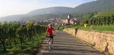 Alsace biking tour