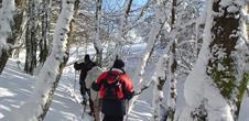 Alsace randonnée pédestre rando-raquettes