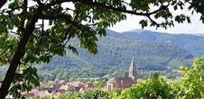 Alsace Safari