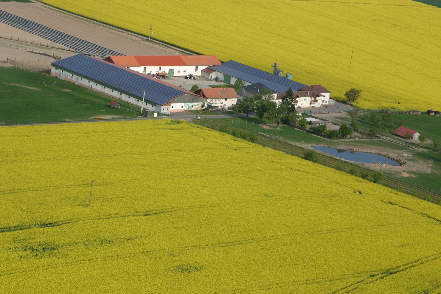 Farm 'Le Strohhof'