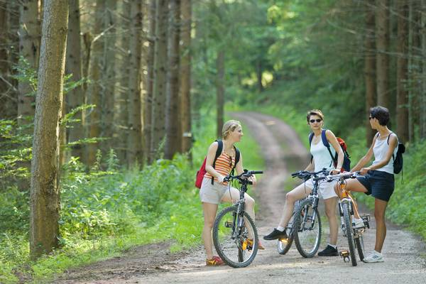 Cycling through Alsace Bossue - Sandstone and the mysteries of the forest