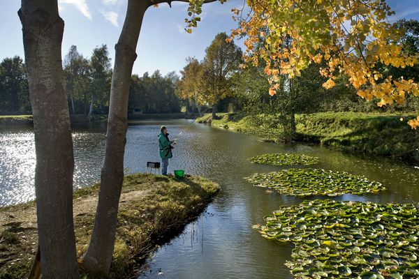 Fishing in Alsace Bossue