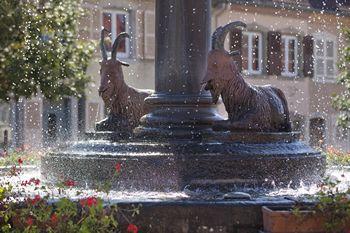 Bocksbrunne 'fontaine aux boucs'