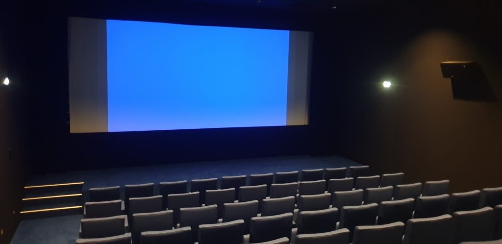 Cinéma : Sauver ou Périr