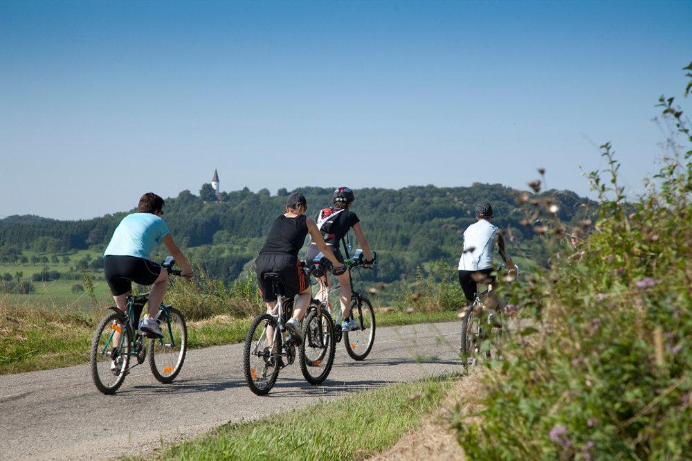 Familien Fahrradweg durch das Krumme Elsass