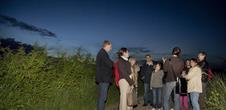 Alsace Écotourisme – Balade crépusculaire: la biodiversité de l'Alsace Bossue