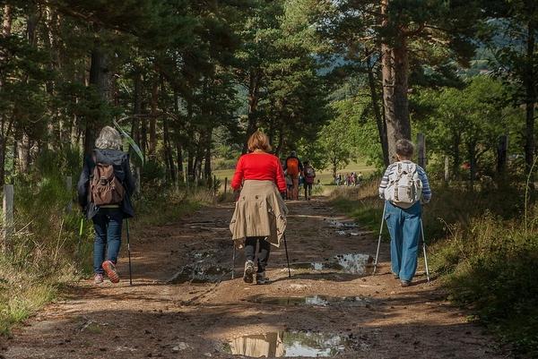 Sortie patrimoine naturel et forestier du club vosgien de Diemeringen