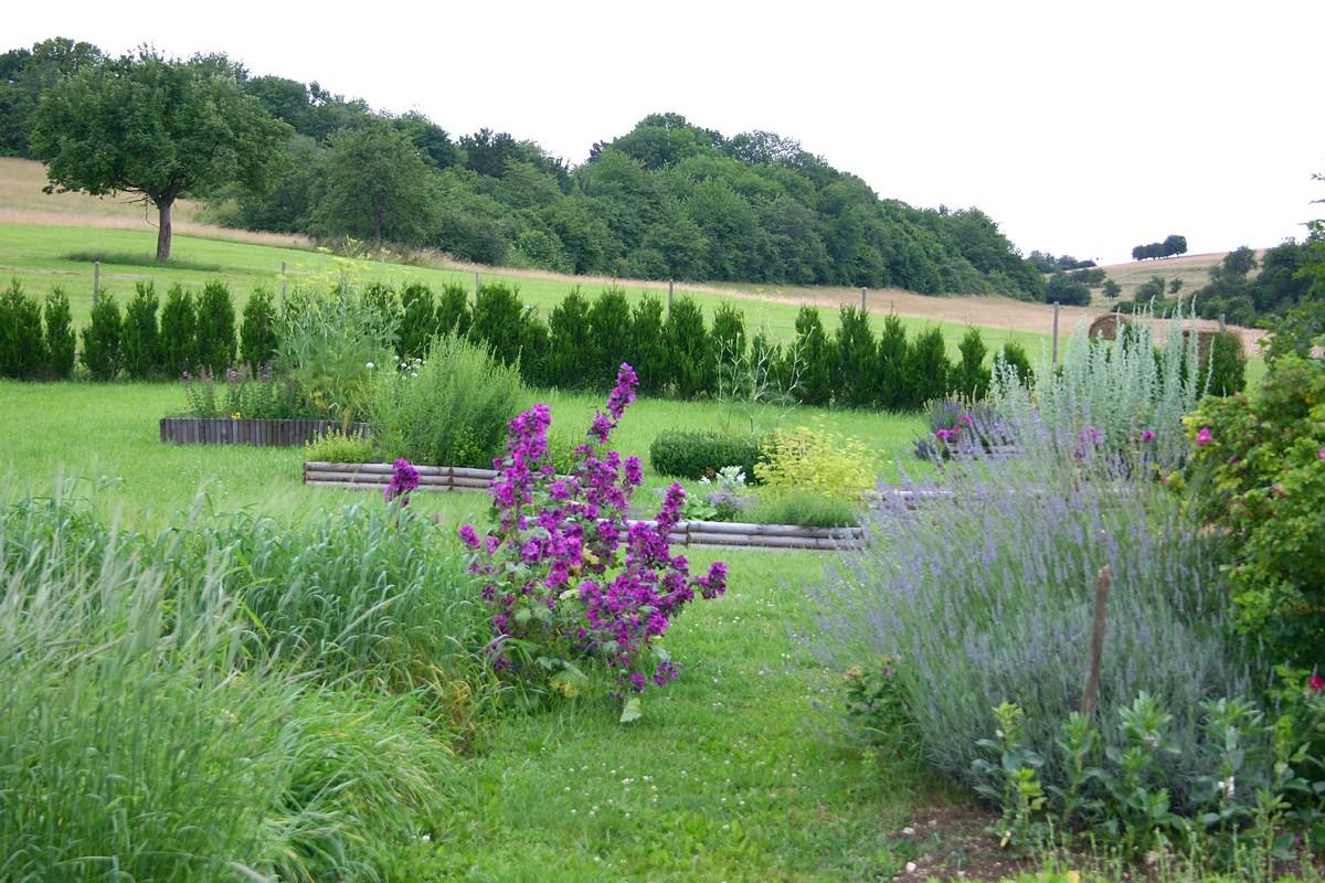 Visite commentée: rendez-vous aux jardins