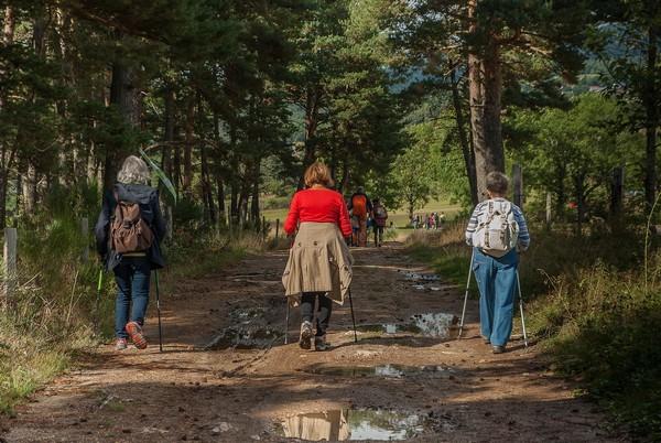 Course d'orientation, à la découverte de notre patrimoine naturel
