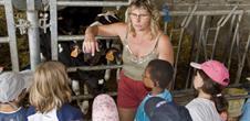 Ferme pédagogique des mystères du lait