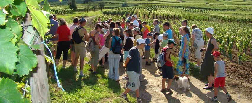 https://apps.tourisme-alsace.info/photos/eguisheim/photos/253000269_1.jpg