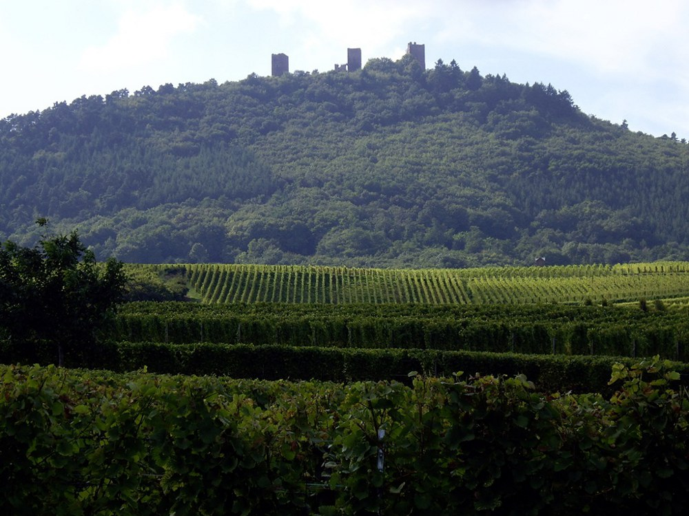 The Three Castles of Eguisheim