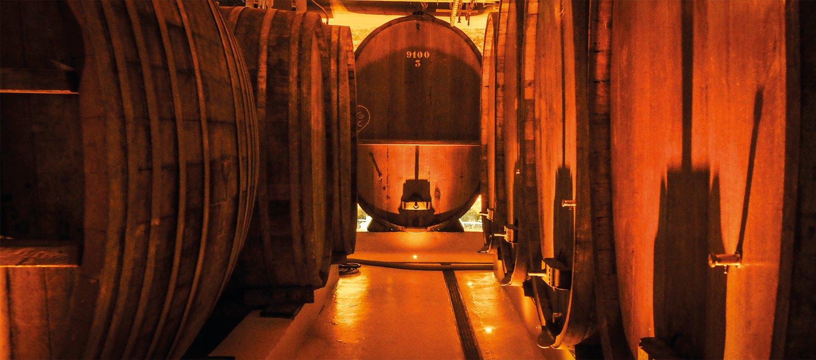 CATTIN, Grands Vins d'Alsace