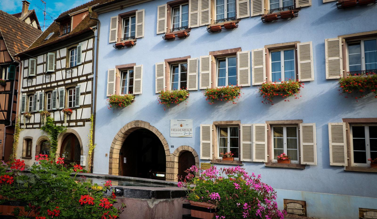 Vins d'Alsace FREUDENREICH Jean-Luc