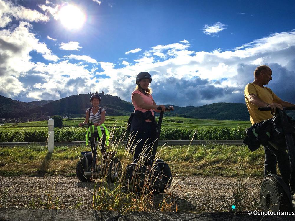 Oenotourismus segway dans le vignoble alsacien - Office de tourisme eguisheim ...