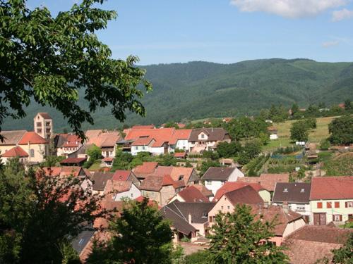 Bickenberg, Osenbach, Pays de Rouffach, Vignobles et Châteaux, Haut-Rhin, Alsace