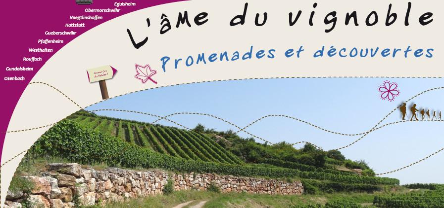 Pays de Rouffach, Vignobles et Châteaux, Haut-Rhin, Alsace