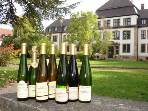 Bouteilles de vin, Pays de Rouffach, Vignobles et Châteaux, Haut-Rhin, Alsace (Domaine de l'Ecole)