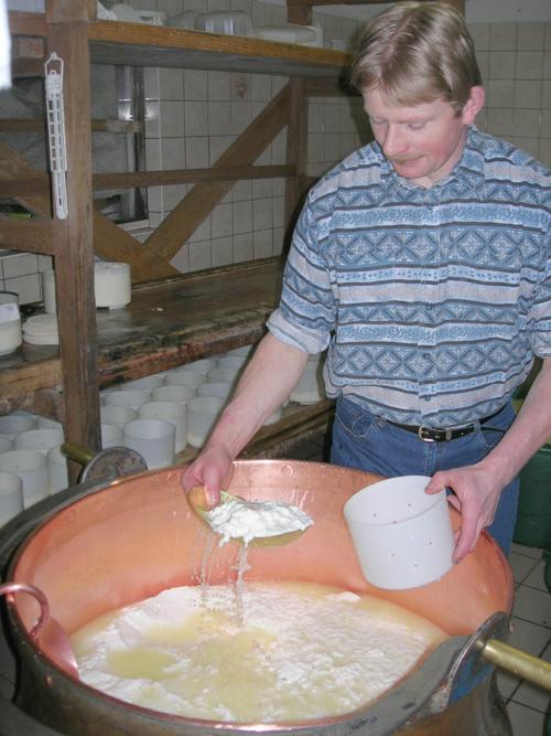 Fabrication de munster à la Ferme Auberge Hilsen, Haut-Rhin, Alsace