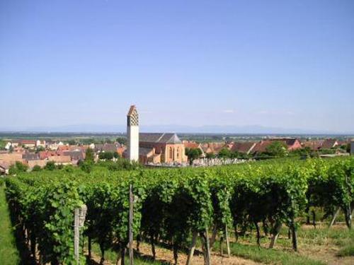 https://apps.tourisme-alsace.info/photos/eguisheim/photos/253002285_1.jpg