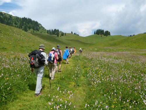 https://apps.tourisme-alsace.info/photos/eguisheim/photos/253002303_1.jpg