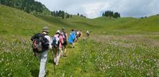 Marche gourmande de la Vallée Noble