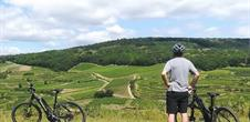 Vélo'vignes - Discover the wineyard with e-bikes !