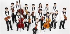 Musicalta : Viva chamber orchestra