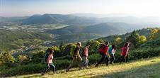 Traversée du Massif des Vosges à pied - Wissembourg / Belfort