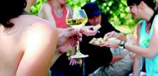 Pique-nique chez le Vigneron Indépendants d'Alsace