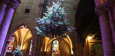Chasse aux trésors de Noël: Histoire et tradition