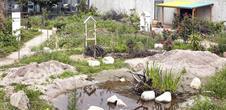 The garden of the FRAC