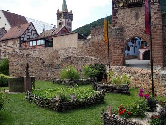 https://apps.tourisme-alsace.info/photos/essais/photos/222004676_1.JPG