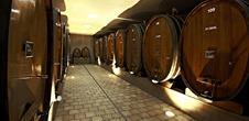 Pique-nique chez le vigneron in Châtenois