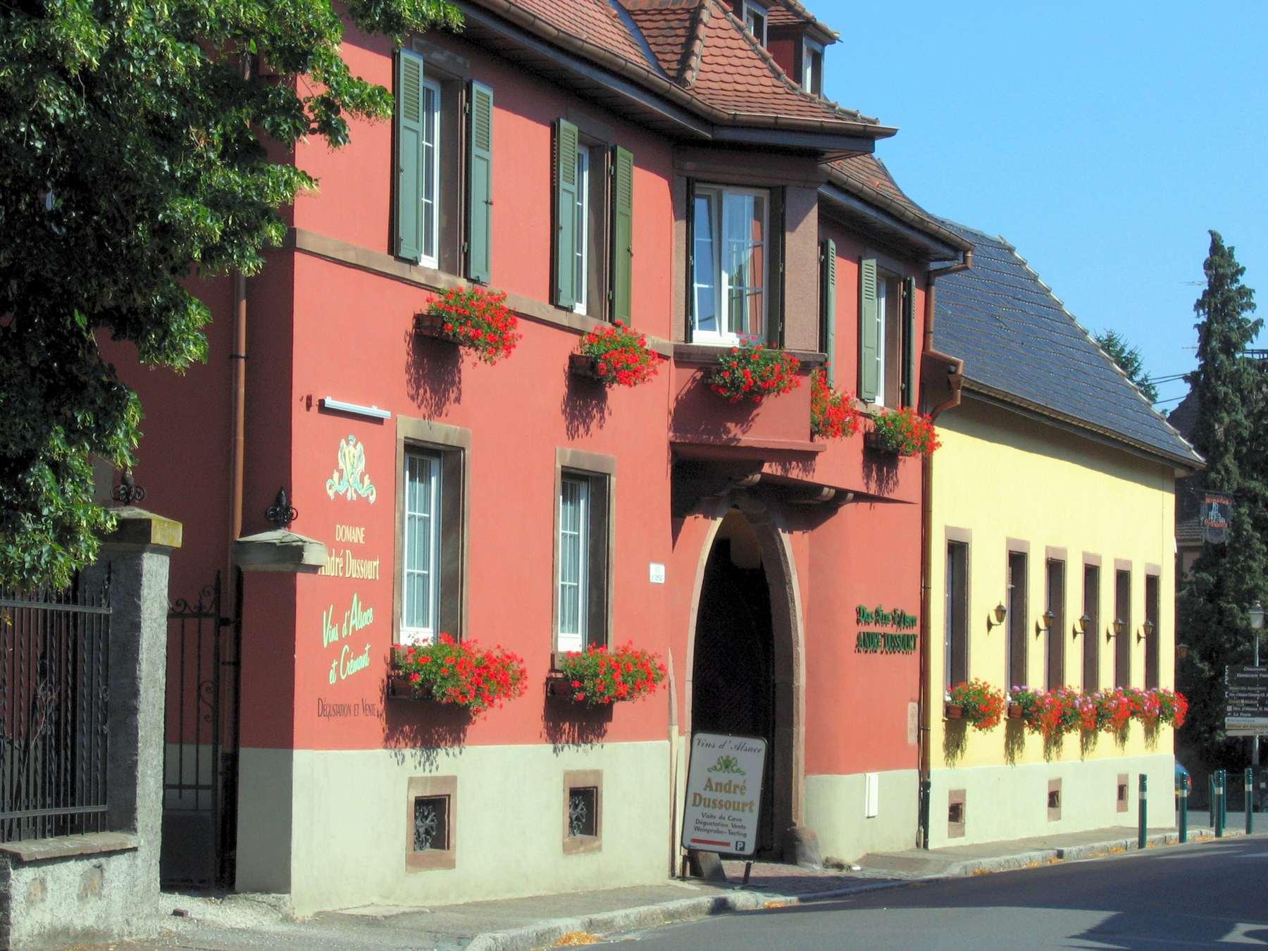 Les vins d'automne au domaine Dussourt - Scherwiller
