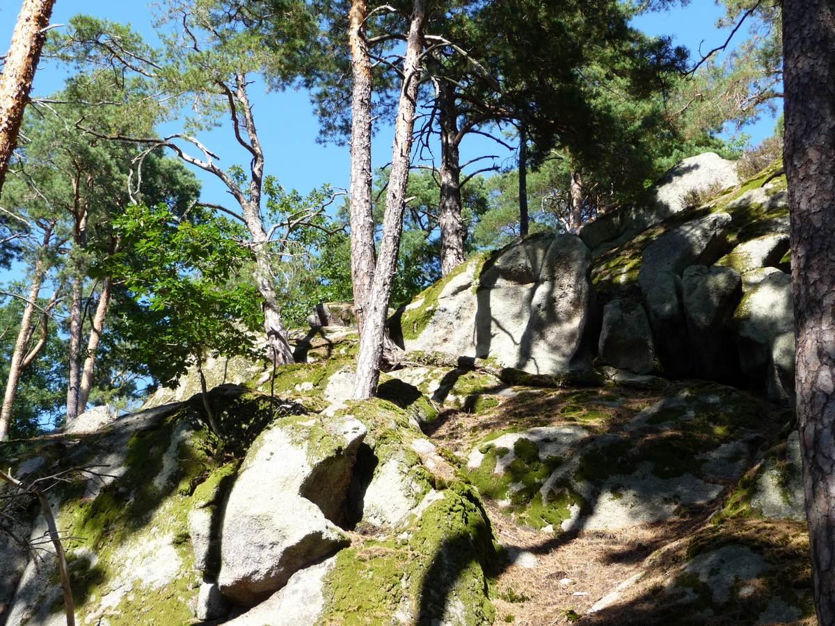 Mauern und Weinberge Erlebnispfad - Dieffenthal