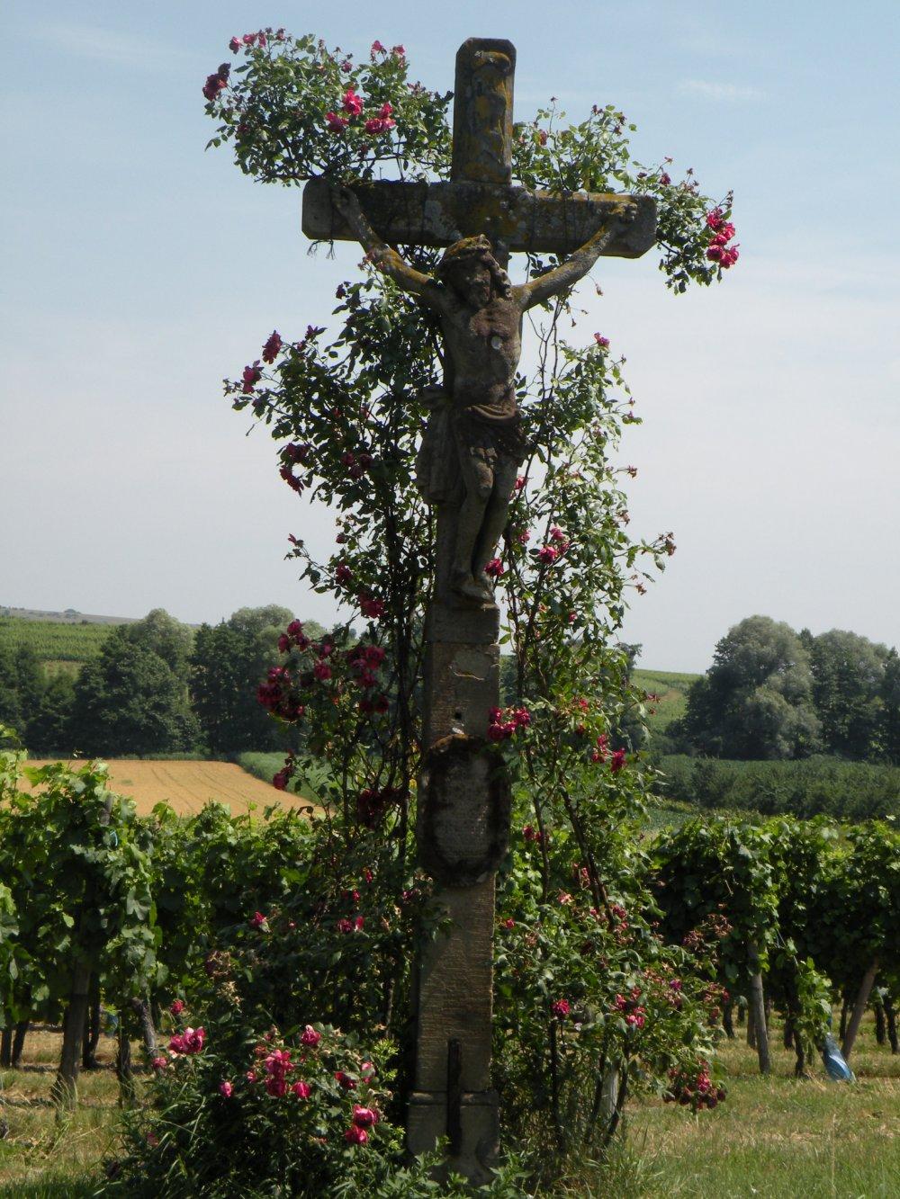 Superbe Tourisme Alsace
