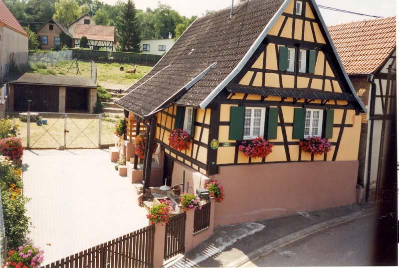 Gîte Sonia Kauffmann n°1343 (Wintzenheim Kochersberg)