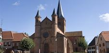 Saint-Adelphe Kirsche