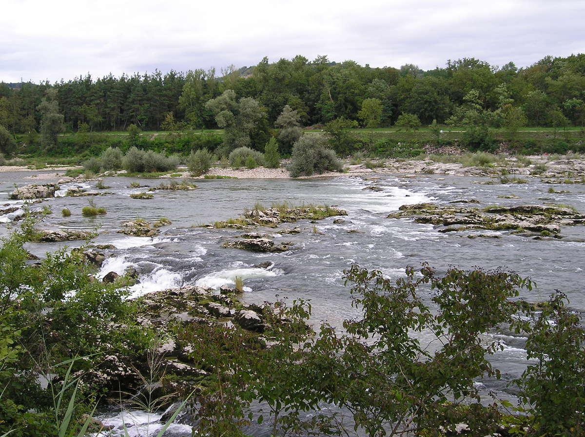 Ile du Rhin et Barre d'Istein