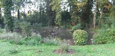 Parc animalier du Langen Erlen - à Bâle
