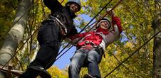 Tree rope adventure park