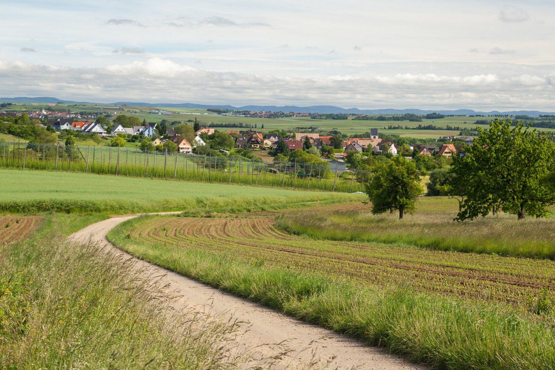 Sentier du Gipsberg