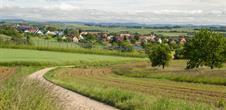 Sentier Colline du Scheuerberg (copie)