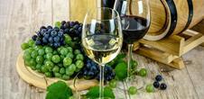 Dégustation de vin en accords