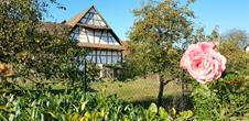 Balade ludique à Sessenheim