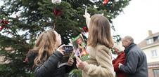 Chasse aux trésors de Noël: Noël vert sapin !
