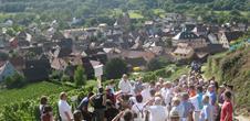Visite guidée du sentier viticole de Soultzmatt